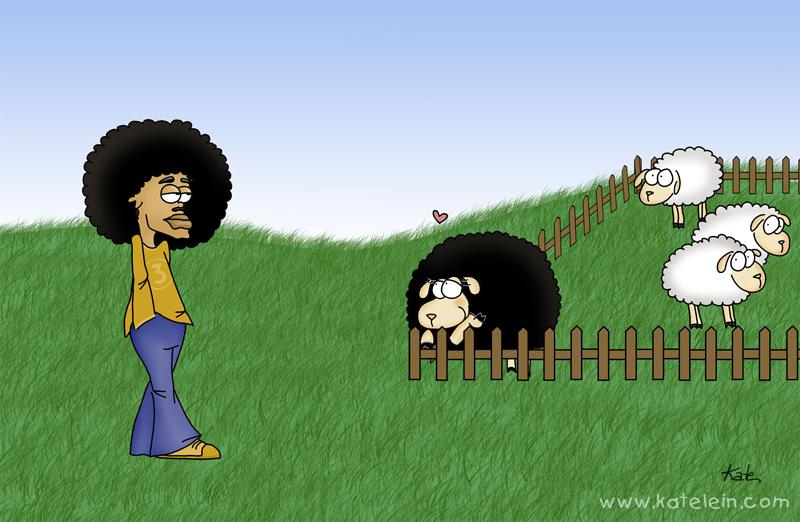 Schaf trifft afro