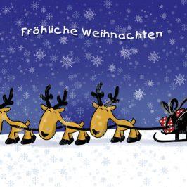 Ein schönes Weihnachtsfest euch allen